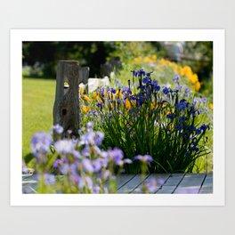 Georgeson Botanical Gardens, Fairbanks Alaska, Iris and Lilies Art Print