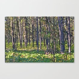 Torch River Forest Canvas Print