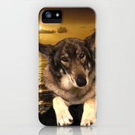 Dog German Shepherd and Sunset iPhone Case