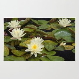 Pale Yellow Water Lilies Rug