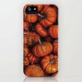 Orange Gourds iPhone Case