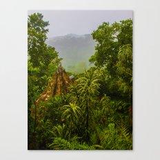 Mist Over Corcovado Canvas Print