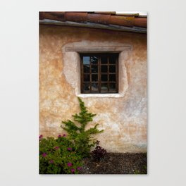Window beauty Canvas Print
