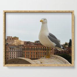 Macro portrait of seagull sitting on the top of building in Roma Italy Serving Tray