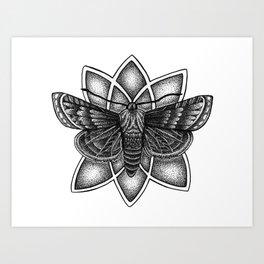 Moth Mandala Art Print