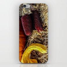Autumn Still Life (ii) iPhone Skin