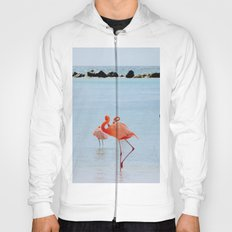 A Flamboyance of Flamingos Hoody