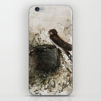 sparrow iPhone & iPod Skins featuring Sparrow by Andrei Clompos