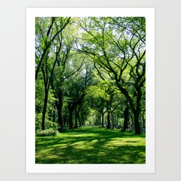 New York 9 Art Print