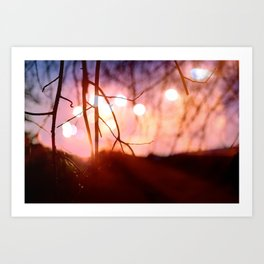 Invigorating Lights I Art Print