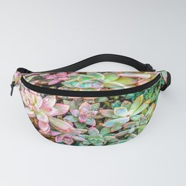 green and pink succulent plant garden Fanny Pack
