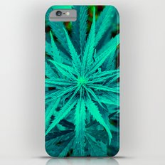 Twisted Frosty Weed iPhone 6s Plus Slim Case
