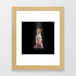 Jack Russell Terrier. Drawing Framed Art Print