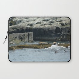Seals relaxing on Coast of Maine Laptop Sleeve