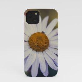 Daisy III iPhone Case