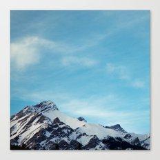 Tops. Canvas Print