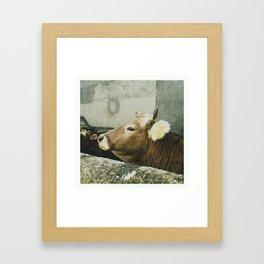 Escarrilla Framed Art Print