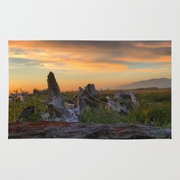 Salty Raven of Cape Meares Driftwood Sunset by Seasons K Rug
