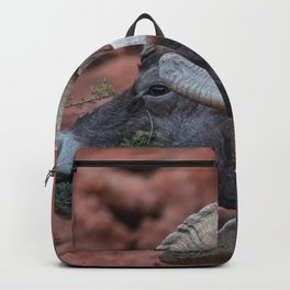 Breakfast - Valley of Fire Resident Backpack