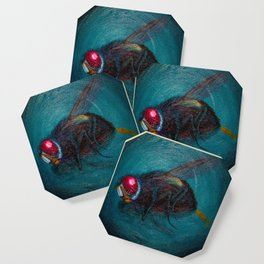 Dead Fly Coaster