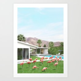 Flamingos in Palm Springs Art Print