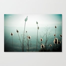 The Story of the Blue Souls Canvas Print