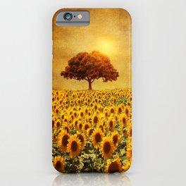 lone tree & sunflowers field (II) iPhone Case