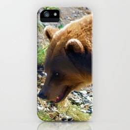 Griz - Wildlife Art Print iPhone Case