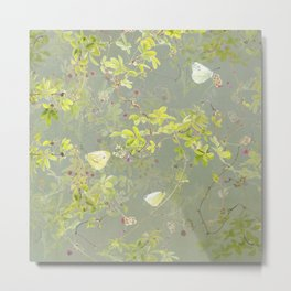 Akebia and green-veined white Metal Print