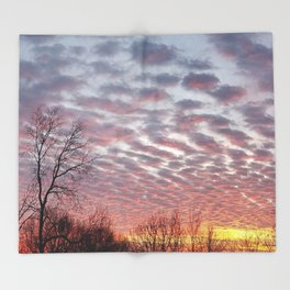 Winter sunset panorama - Hoyt Park, Madison, WI Throw Blanket