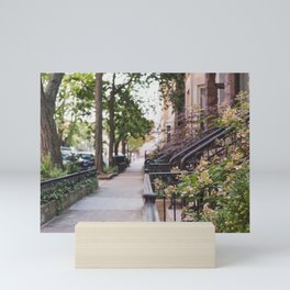 Walking through Chicago Mini Art Print