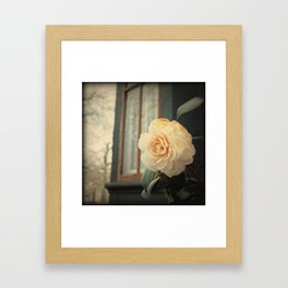 Flowers At The Abbey Framed Art Print