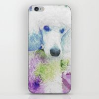 poodle iPhone & iPod Skins featuring poodle by Sarah Jane Connors