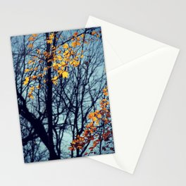 Light Up Stationery Cards