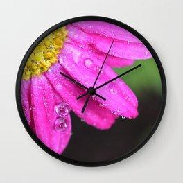 My beautiful flower: daisy Wall Clock