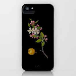 Pyrus Malus Mary Delany Delicate Paper Flower Collage Black Background Floral Botanical iPhone Case
