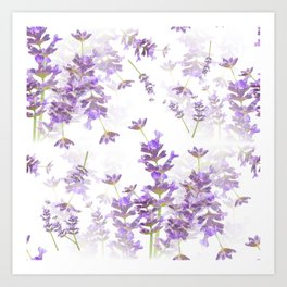 Lavender Bouquets On White Background #decor #society6 #buyart Art Print