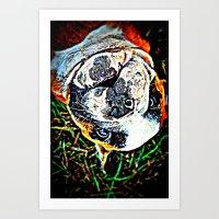 english bulldog Art Prints featuring English Bulldog by Ridgerunner64
