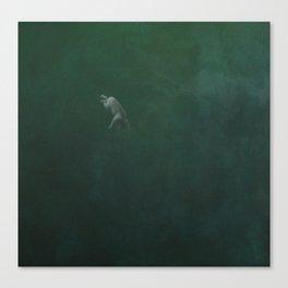 cold depths Canvas Print