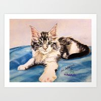 Original Pet Animals Artwork (non-profit) - Maine Coon Kitten Cat Pastel Art Print