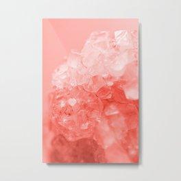 Coral Gem Metal Print