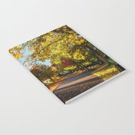 Crazy Fall Notebook