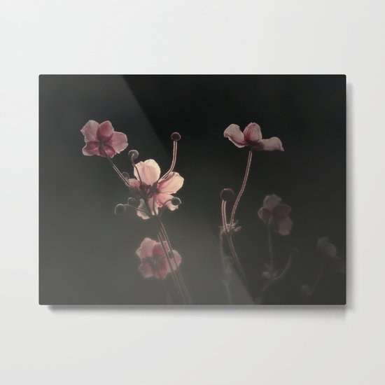 THE FIRST LIGHT Metal Print