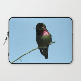 Male Anna's Hummingbird Laptop Sleeve