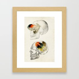 Feathers In My Head Framed Art Print