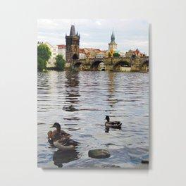 Ducks and Charles Bridge Metal Print