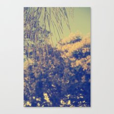 Distance  Canvas Print