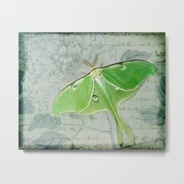Luna moth dreams Metal Print