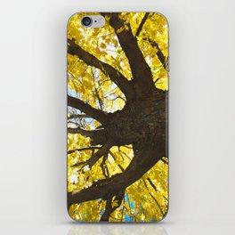 yellow fall  iPhone Skin