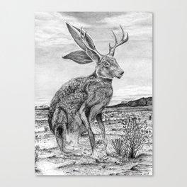 Chisos Mountain Jackalope Canvas Print